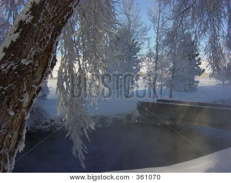 Snowy Giant Springs