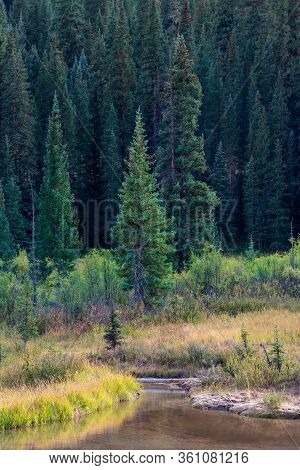 Early Fall Colorado Mountain Scene Featuring An Alpine Stream Meandering At The Base Of Majestic Pin