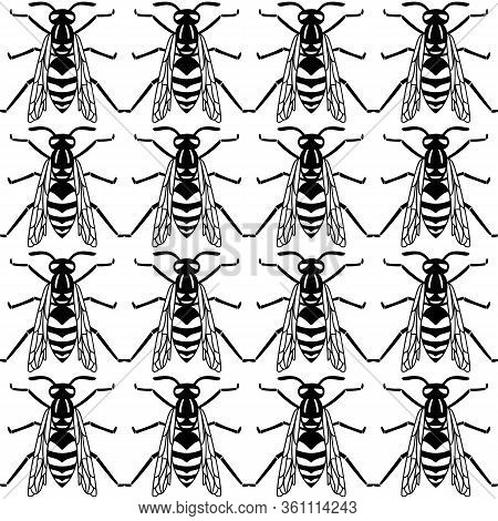 Seamless Pattern Of Black Wasp On Yellow Background.