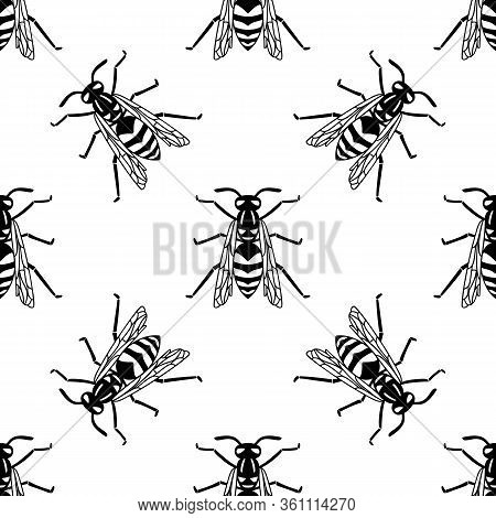 Seamless Pattern Of Black Wasp Isolated On White Background. Vector Illustration Of Wasp Insect In L