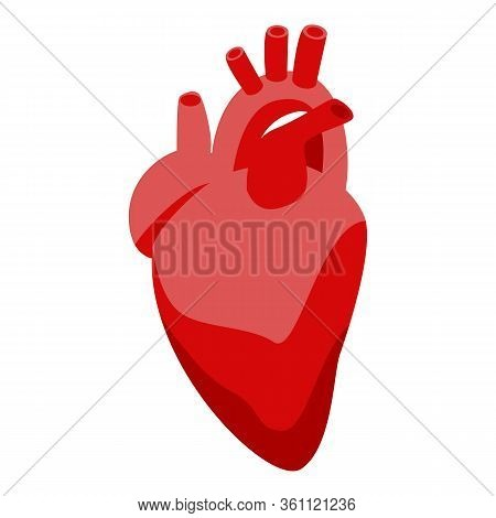 Donate Organs Human Heart Icon. Isometric Of Donate Organs Human Heart Vector Icon For Web Design Is