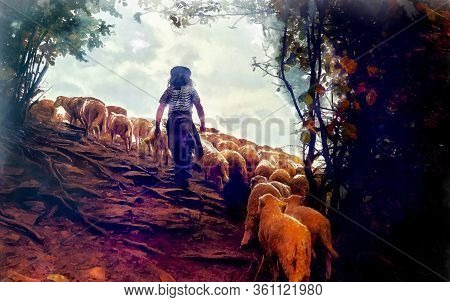 Flock Of Sheep On Beautiful Mountain Meadow, Painting Effect.