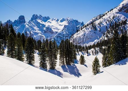 Snow Between The Peaks Of The Dolomites With Blue Sky And Green Pine Woods In Dobbiaco, Italy