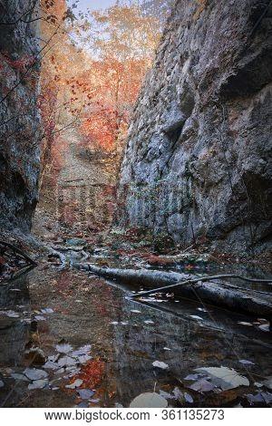 Detail Of Nerei Gorge In Fall Season, Cheile Nerei Beusnita Romania