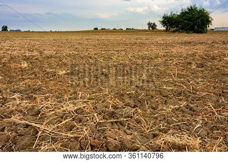 Empty Plowed Field After The Harvest In A Kibbutz In The Center Of Israel In The Sharon Area