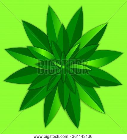 Vector Illustration Green Background And The Abstract Colored Round Leaves