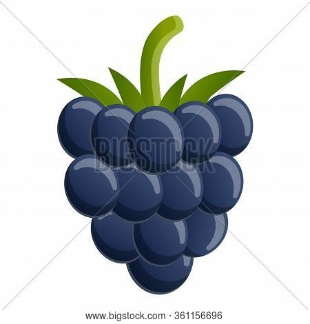 Forest Blackberry Icon. Cartoon Of Forest Blackberry Vector Icon For Web Design Isolated On White Ba