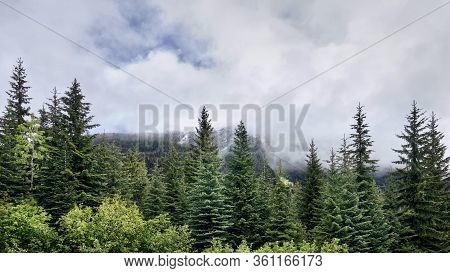 Majestic Mountains And Coniferous Forest Along The Duffey Lake Road (lillooet To Whistler), BС, Cana