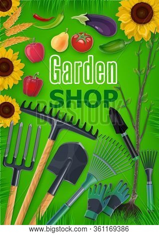 Garden Tools Shop Vector Poster. Farming, Agriculture And Gardening Equipment. Agrarian Farmer Rakes