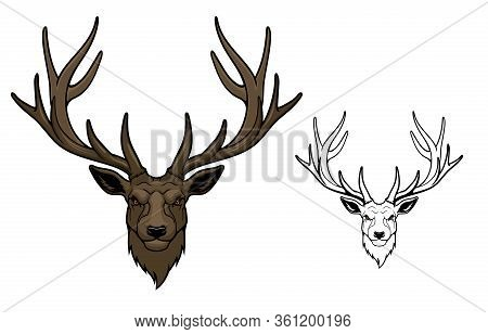 Deer Wild Animal Mascot. Reindeer Or Stag With Antlers And Angry Eyes, Isolated On White. Hunting Cl