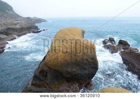 See coast