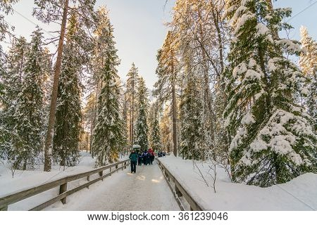 Hiking In A Frozen Forest In The Lapland, Finland, Scandinavia