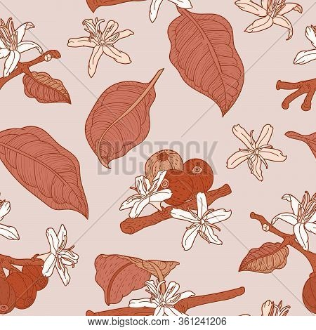 Beige Seamless Pattern With Flowering Coffea Branch