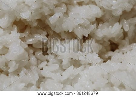 Boiled Long Grain Rice For Sushi Rolls Close-up Background