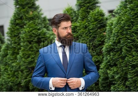 Successful And Motivated. Business Life. Man Businessman Classic Style Urban Park. Business Man Bear