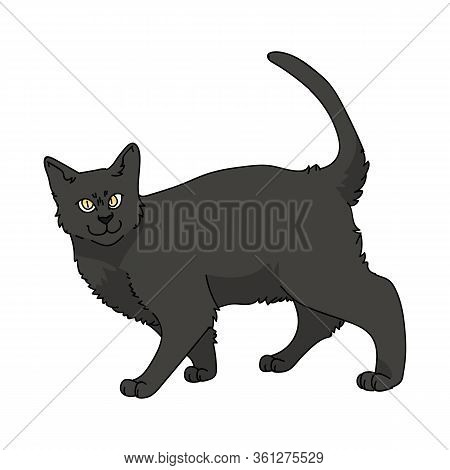 Cute Cartoon Bombay Cat Vector Clipart. Pedigree Kitty Breed For Cat Lovers. Purebred Black Domestic