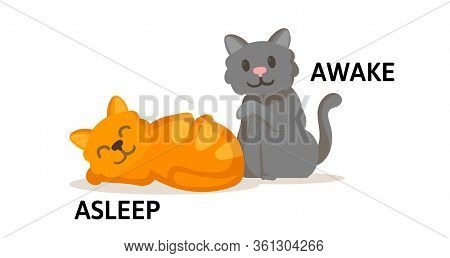 Words Asleep And Awake Flashcard With Cartoon Animal Characters. Opposite Adjectives Explanation Car