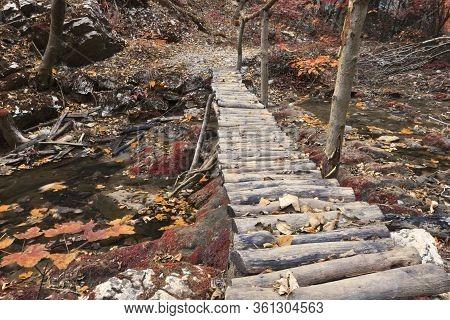 Footbridge In Cheile Nerei National Park, Romania