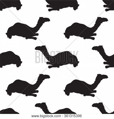 Vector Seamless Pattern With Black Camel Silhouettes On White Background. Arabian One-humped Camel D