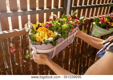 Young woman taking care of her plants on the balcony