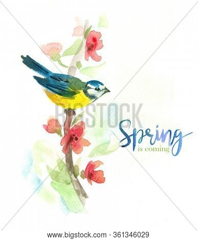 Gentle watercolor background with titmouse sitting on a branch of flowering tree