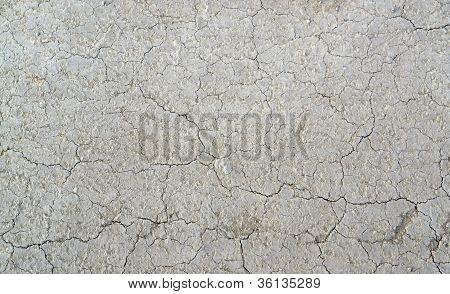 Loamy Ground