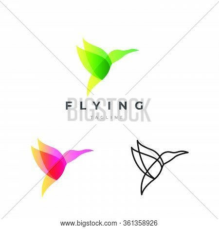 Abstract Stylish Luxury Humming Bird Logo Design Vector Template Eps 10 With Line Version Included
