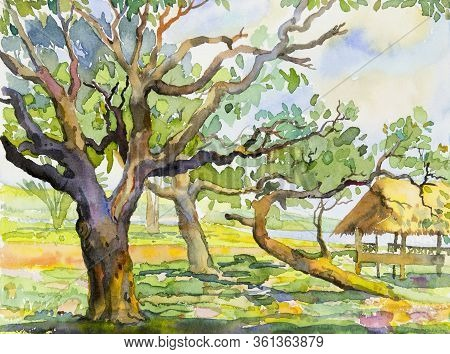 Watercolor Landscape Painting Colorful Of Garden Natural Beauty Tree And Forest With Sky Cloud Backg