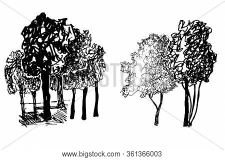 Silhouettes Of Trees, Garden Crops, Park, Black And White Vector Illustration. Isolated On White.