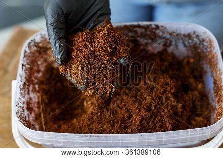 Coconut Husk Fiber Organic Fertilizer In Container