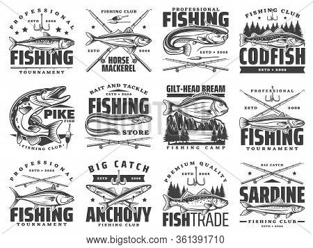 Fishing Sport Club Badges, Fishes And Rod Hooks Tackle Vector Icons. Fisherman Tournament Of Big Fis