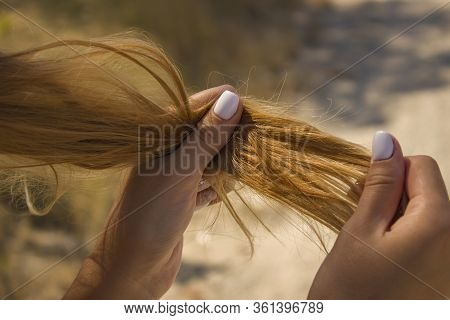 Girl Holding Dry Brittle Hair. Brittle Damaged Tips, Hair Loss.