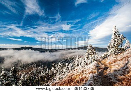 Winter In Low Mountains In The Czech Republic. Jeseniky Mountains, Moravia, Czechia. Hiking In Czech