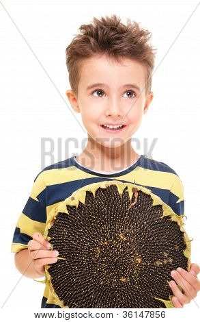 Little Smiling Boy Holding Ripe Sunflower