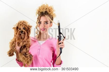 Grooming. Pet Salon. Pet Shop. Dog Salon. Beauty Salon For Animals. Life Of Pets. Girl With Puppy. W