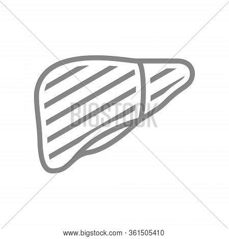 Sore Human Liver Line Icon. Gastrointestinal, Liver Cancer, Infected Organ, Cirrhosis Symbol