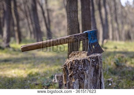 Ax For Chopping Wood In Nature. Old Ax For Chopping Wood. Lumberjack Ax For Chopping Wood. Old Blue