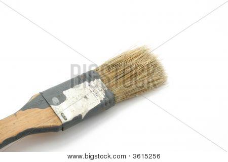 A Brush