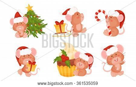 Cute Mouse With Long Tail And Protruding Ears Holding Candy Stick And Carrying Gift Box Vector Set