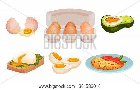 Raw And Cooked Egg With Omelette And Scrambled Egg In Avocado Vector Set