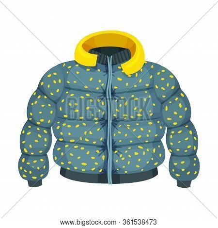 Zippered Puffer Jacket With Hood As Womenswear Vector Illustration