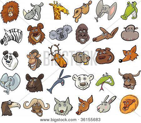Cartoon Wild Animals Heads Huge Set