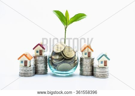 Tree On The Coin. House On Coins.  Money, Saving And Investment Or Family Planning Concept. Money Fo