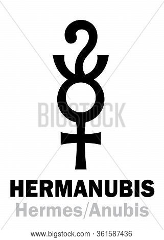Astrology Alphabet: Hermanubis (hermes+anubis), The Greek-egyptian Syncretic Deity Of Truth, The Con