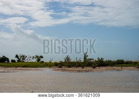 Muddy Pool And Gulf Of Mexico Beyond In Everglades