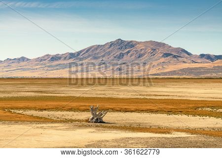 Salt Lake City, Utah, USA baren landscape at the Great Salt Lake.