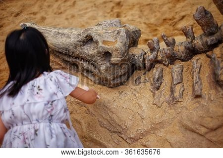A Girl Playing In A Sandbox With A Modeled Dinosaur Fossil, Digging Sand Off The Fossil.