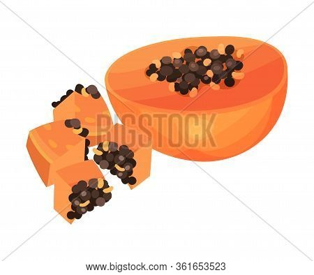 Halved Papaya Fruit And Cut Into Cubes Showing Orange Flesh And Numerous Black Seeds Vector Illustra