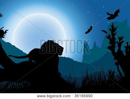 African night background