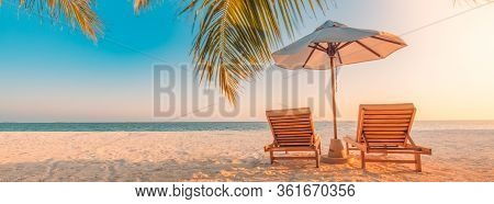 Tropical Beach Resort Hotel Background As Summer Landscape With Lounge Chairs And Palm Trees In Sun